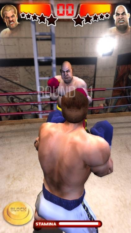 Iron Fist Boxing screenshot-3