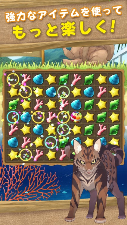 Cat Island~match 3 games~