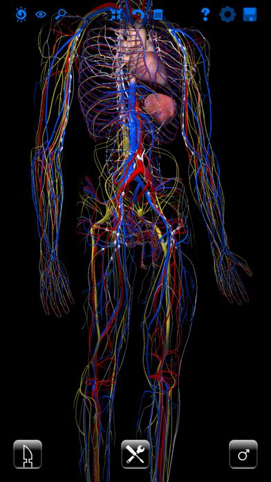 ザイゴット3D人体解剖のおすすめ画像5