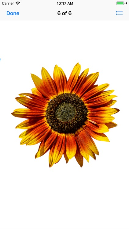 Sunflower Stickers screenshot-6
