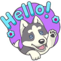Husky Dog Stickers