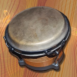 i Play My Cuban Bongo Drums