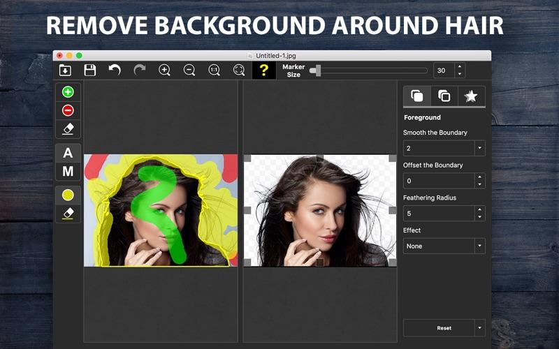 PhotoScissors Screenshots