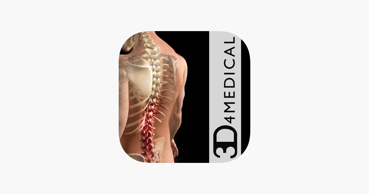 Orthopedic Patient Education on the App Store