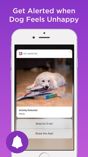 Pet monitor on the app store pet monitor on the app store fandeluxe Images