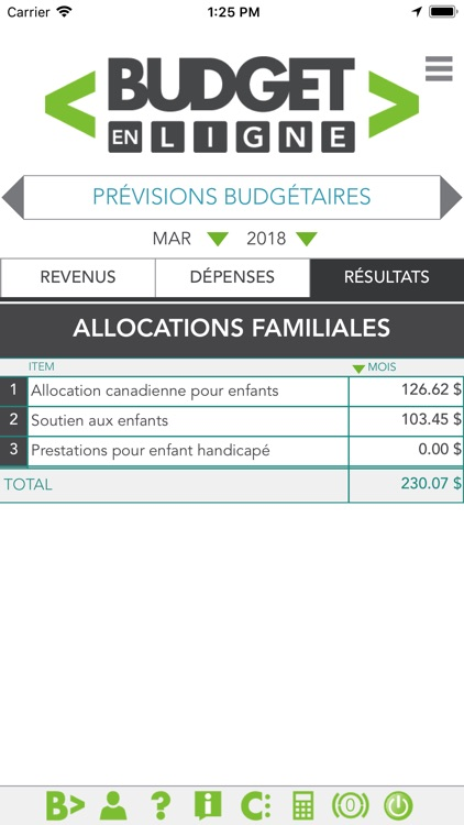 Budget en ligne screenshot-3