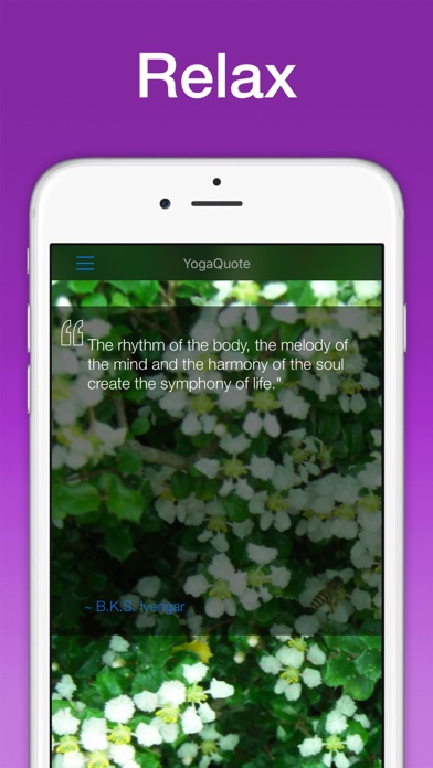Daily Yoga Quotes Yogaquote App Price Drops