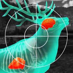Wild Hunt: Deer Hunting Games