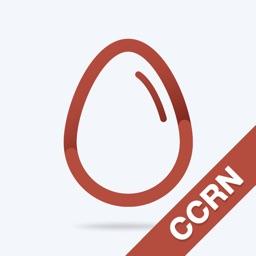 CCRN Practice Test