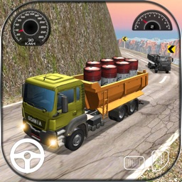 Twisty Truck Driver 3D