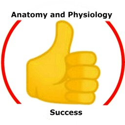 Anatomy and Physiology Success
