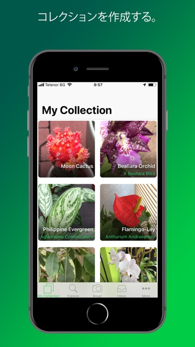 PlantSnap screenshot1