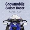 Snowmobile Slalom Racer
