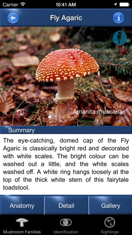 Mushroom Id North America screenshot-1