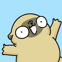 Mochi the pug