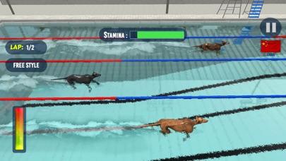 犬のスイミングレースのおすすめ画像3