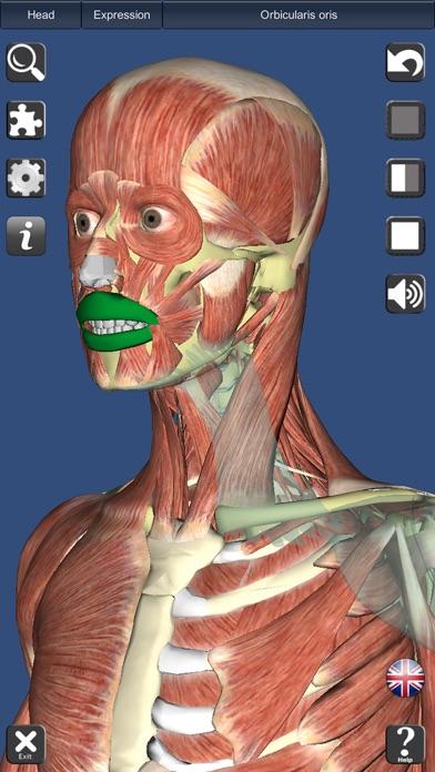 Visual Muscles 3D Screenshots