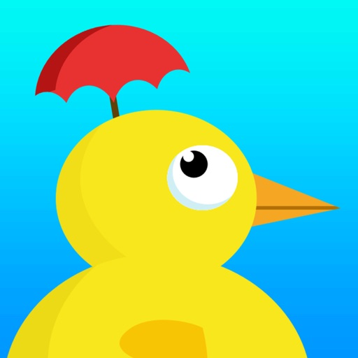 Weather Duck