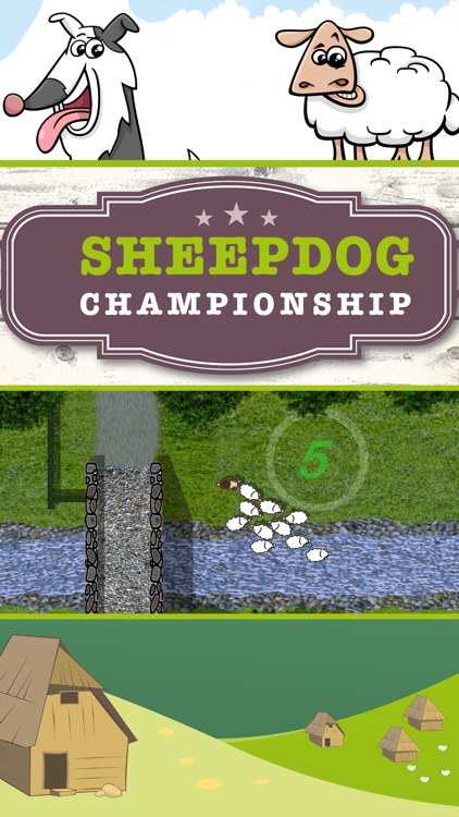 Sheep dog Championship screenshot-0