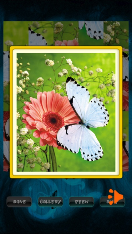 Butterfly Jigsaw screenshot-2