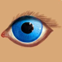 Eye Visual Exercise VR