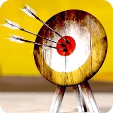 Activities of Archery Match 3D