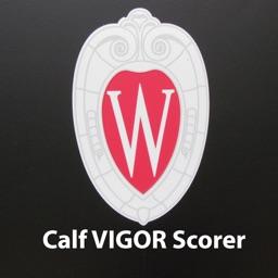 Calf VIGOR Scorer