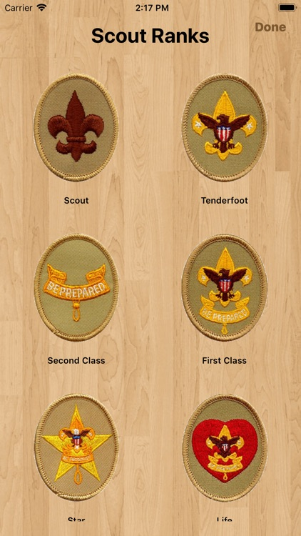 Scouts & Merits - Merit Badges screenshot-4