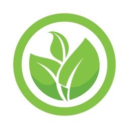 Plant Catalogue