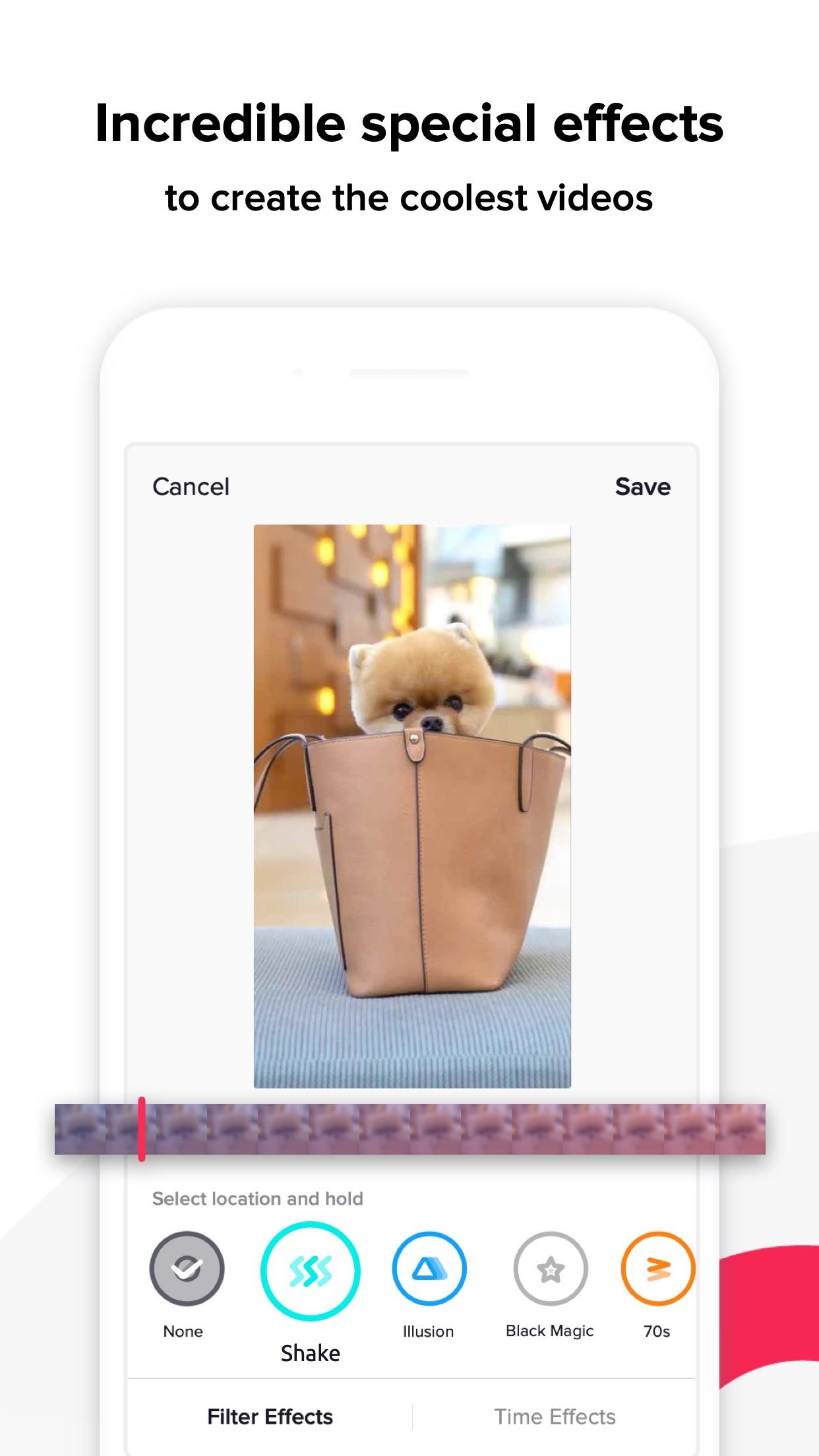 TikTok - including musical.ly Screenshot