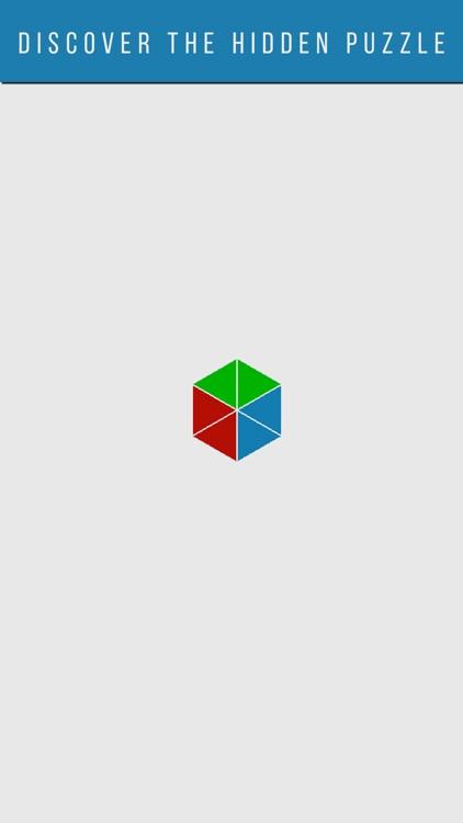Shapeuku - Shape Puzzle Game screenshot-4