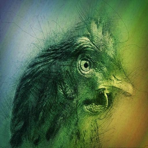 Chicken N Turkey Stickers