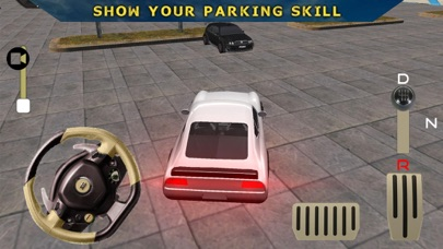 Parking Legend: Driving School screenshot two