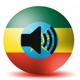 Amharic Translate Lite