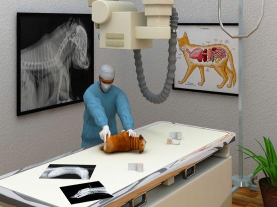 Virtual Pet Care Vet Hospital screenshot 10