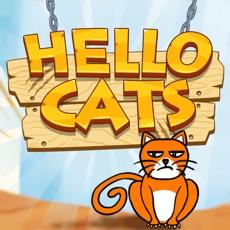 Activities of Hello Cats!