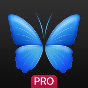 Everpix Pro - HD Wallpapers app
