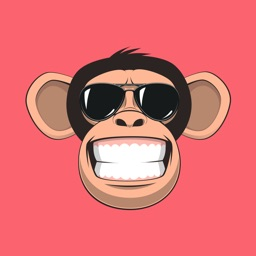 Fun Monkey Stickers