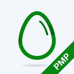 PMP Practice Test Pro