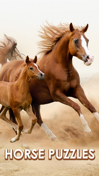 Horse Jigsaw Puzzle Games screenshot-0