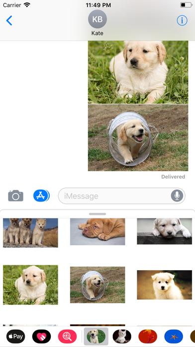 点击获取Puppy Sticker Pack