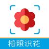 iFlowers - Plant identifier