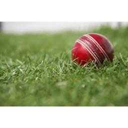 Cricket GR8
