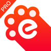 指尖浏览器Pro版