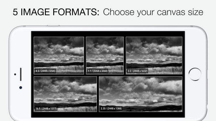 Camera1 - Black & White Camera