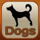 1,337 品种的狗兽医 icon