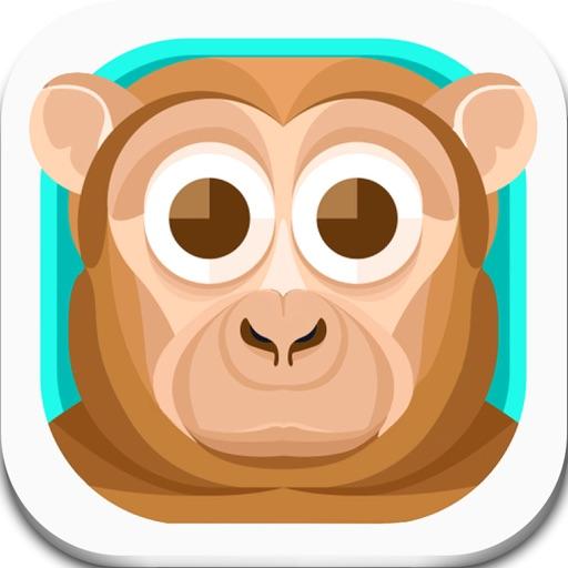 Monkey Adventure - dont fall!