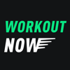 MobileTrends Inc. - Workout NOW 2018  artwork