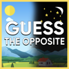 AppsCorp OÜ - Guess The Opposite artwork