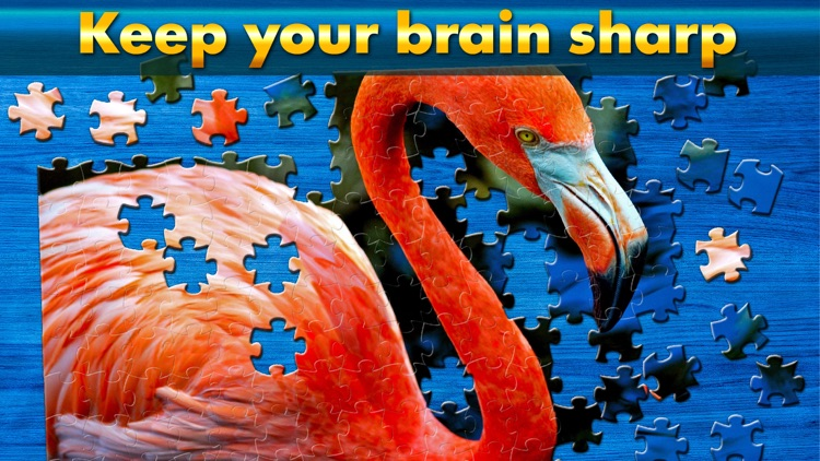 Cool Jigsaw Puzzle HD screenshot-4